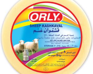 orly-Kash2