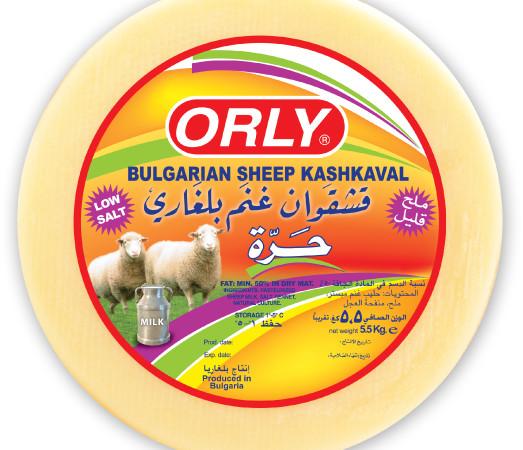 orly-Kash5